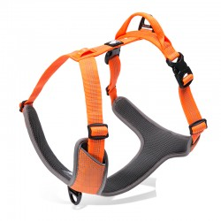 Truelove Mountain harness