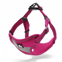 Truelove Training harness