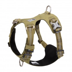 Truelove colorado + harness