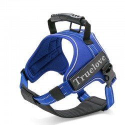 Truelove City + harness