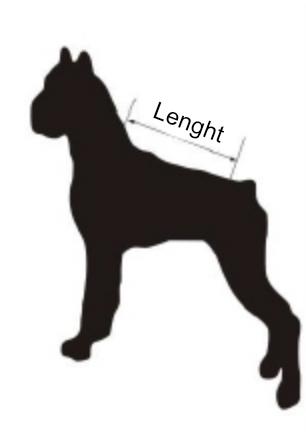 lenght_1.jpg